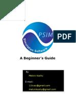 PSIM basics