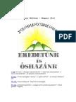 Radics Géza - Eredetünk És Őshazánk
