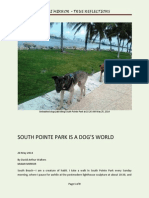 South Pointe Park - a Dog's World in South Beach