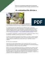 Los Habitantes de La Ciudad de La Paz Se Ven Afectados Por Distinto Tipos de Contaminación Ambiental