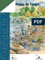 fichas-de-campo-ok.pdf
