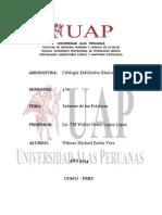 Modelo de Informe Depracticas