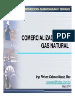 MOD05!07!1Comercializacion Gas Natural