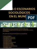 Ramas o Escenarios Sociologicos