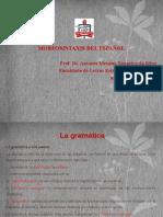 Morfología Del Español NUEVO