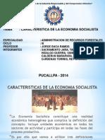 Diapositivas de Caracteristicas de La Economia Socialista