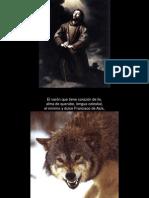 Los Motivos Del Lobo