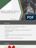 Sistema de segmentação interativa do ventrículo esquerdo em sequências de imagens de ressonância magnética (Cine MR)