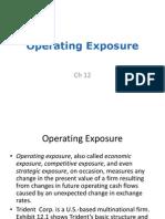 9.1 Operating Exposure(1)