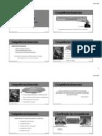 Slides 9 - COMPETÊNCIAS DE LIDERANÇA
