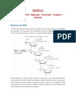 Resumo Estrutura Do DNA, Replicação, Transcrição, Tradução e Mutação