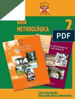 Guía Metodológica 2 Intermedio
