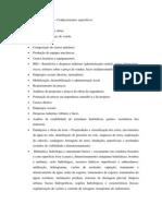 ENGENHEIRO CIVIL - Conhecimentos Específicos