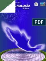 Diagnostico y Prospectiva Nanotecnologia en Mexico