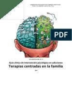 Terapia Centrada en Familia APC