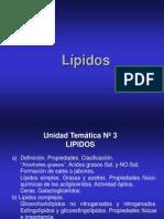 Clase de Lipidos