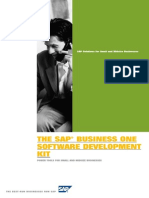 SAP Business One SDK Solution Brief