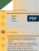 Fisiologia Articular Ombro