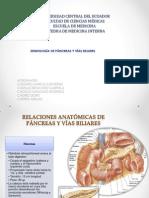 Semiología Del Páncreas y Vías Biliares.