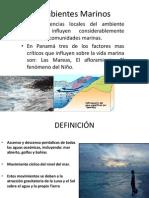 Mareas, Afloramiento,EL Ninno