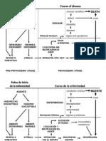 A Historia Natural de La Enfermedad