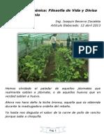Agricultura Orgánica, Filosofía de Vida y Divisa Del Nuevo Milenio