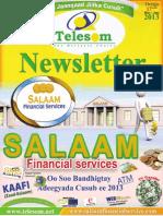 Telesom Newsletter Issue 17 - July 2013