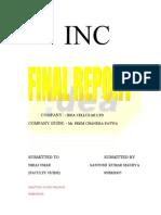 santosh report  about idea cellulor company ltd