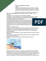 La Contaminacion Ambiental y El Derrame Del Petroleo