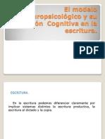 El Modelo Neuropsicológico y Su Aplicación Cognitiva En