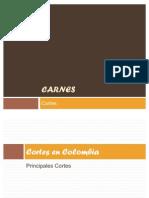 38105629-Carnes.pdf
