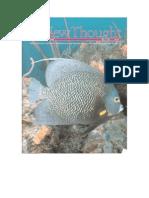 New Thought Magazine How I Use Physics to Pray Sky Nelson
