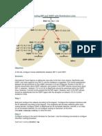 RIP OSPF Distribution