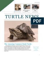 serif newsletter