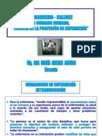 2[1].Humanis-calidez Es Cuidado Hum. Arequipa Amaa 2010