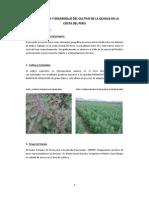 Proyecto_Quinua_web_cepdep.pdf