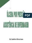 Ulcera Pressao Assistencia Enfermagem