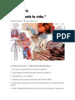 talleres del sistema circulatorio
