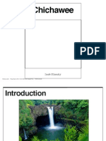 ibooks chichawee jacob klionsky pdf