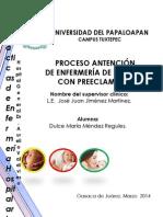 Proceso Enfermero Preeclampsia1