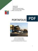 Portafolio APS