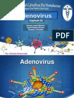 Expo Micro 3 Parcial Adenovirus