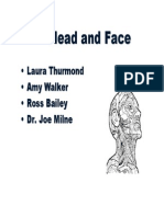 Head and Face 2003