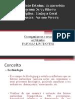 AULA2 - FATORES LIMITANTESOS