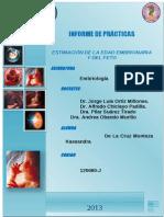 PRACTICA Nº 02 - Estimacion de La Edad Embrionaria