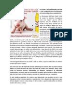 Los Cerdos y Vacas Alimentados Con Soya y Maíz Transgénico Sufren Horriblemente de Trastornos Digestivos y Reproductivos
