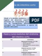 Síndrome de Intestino Corto