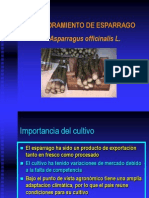 H2_ESPARRAGOS