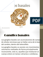nucleos basales