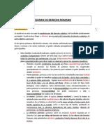 Resumen de Romano.docx